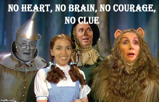 The Idiots of Oz